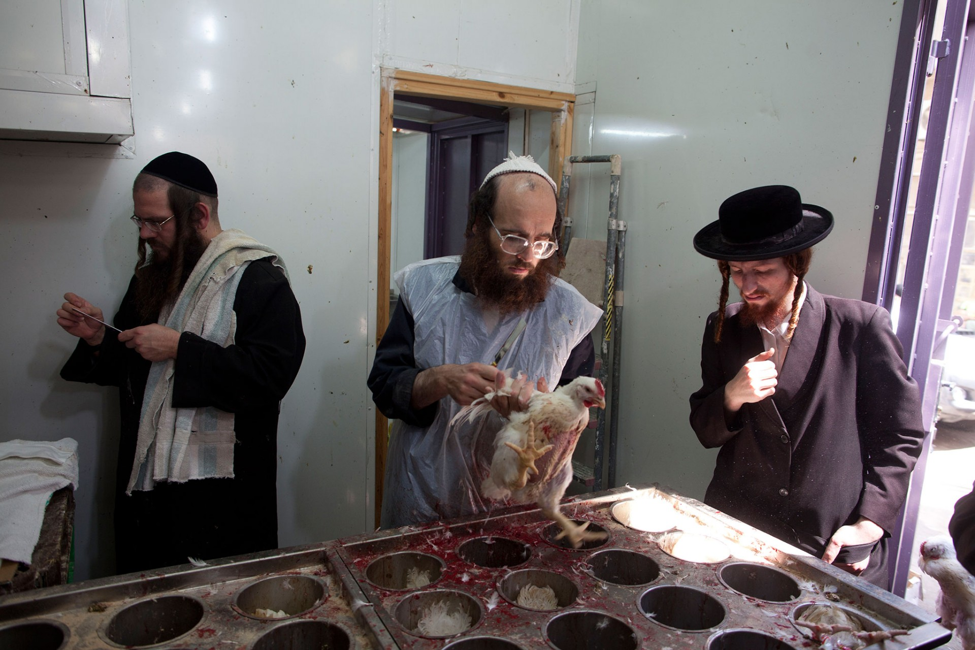 Religious Jews Conduct Kapparot Ceremony Ahead Of Yom Kippur