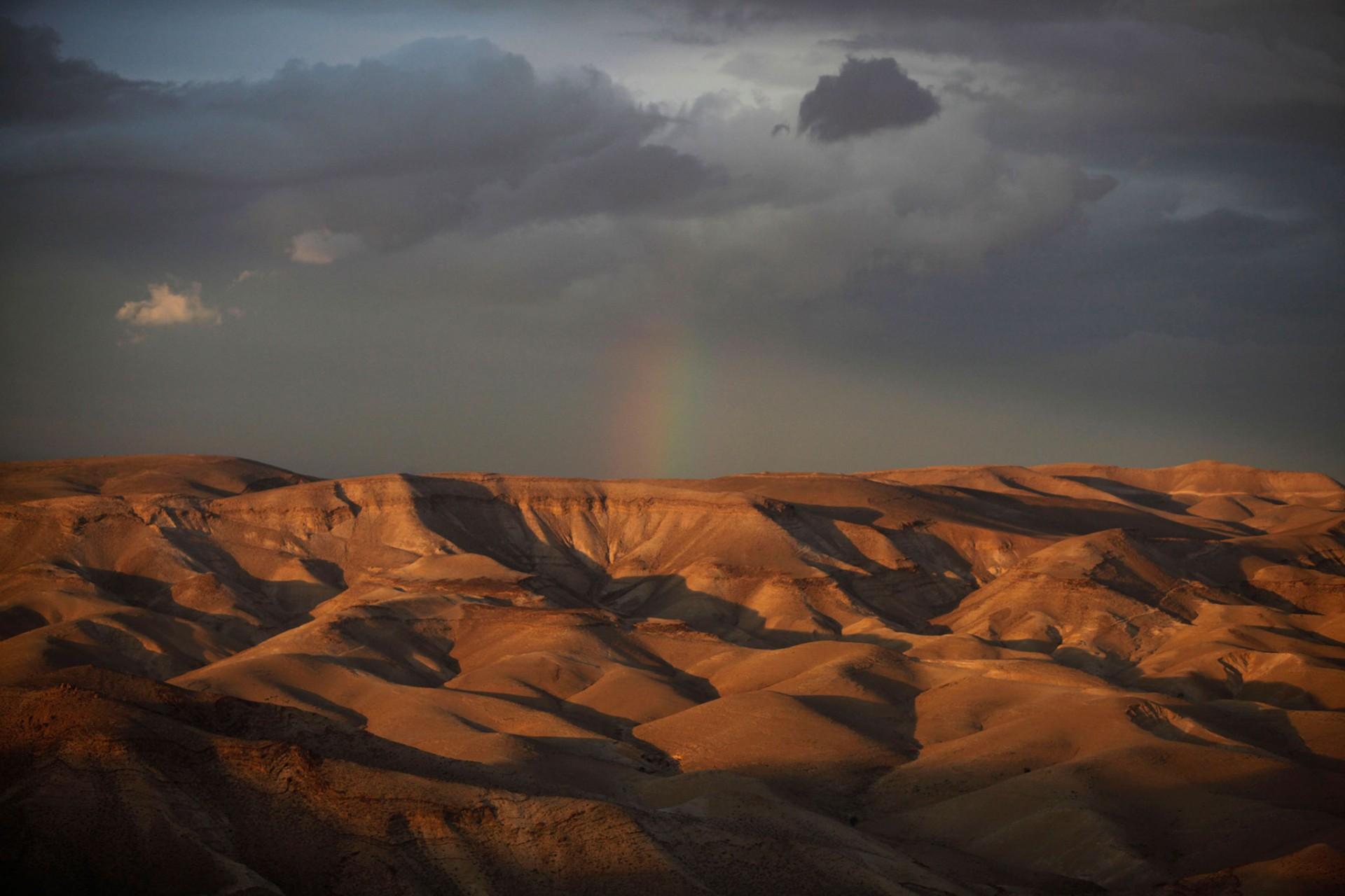 Judaean Desert, 2012